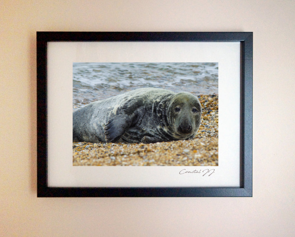 'Just Relaxing' Framed Print - £40