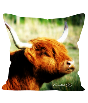 "'West Sussex Highland Laddie' 18"" Cushion Faux Suede"