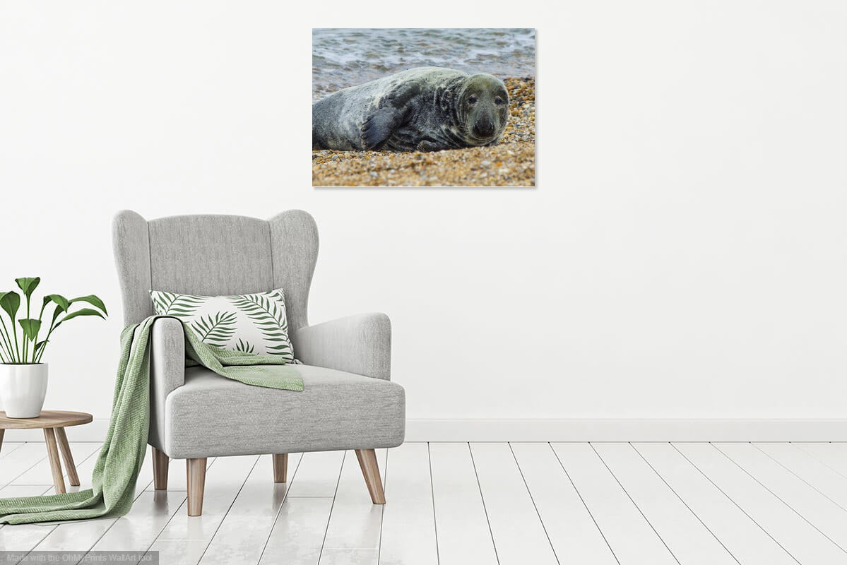 'Just Relaxing' Canvas Print