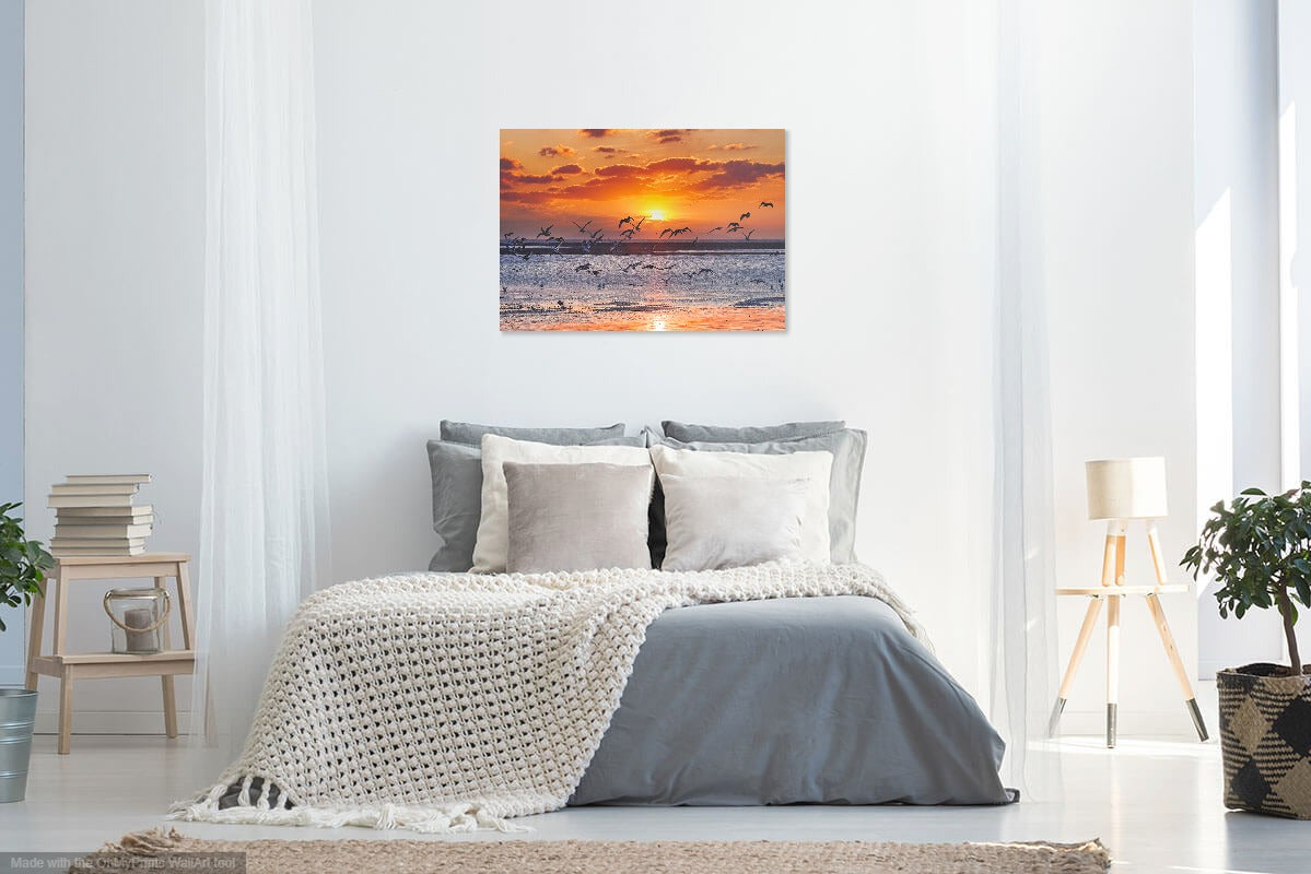 'Seagull Sunset' Canvas Print