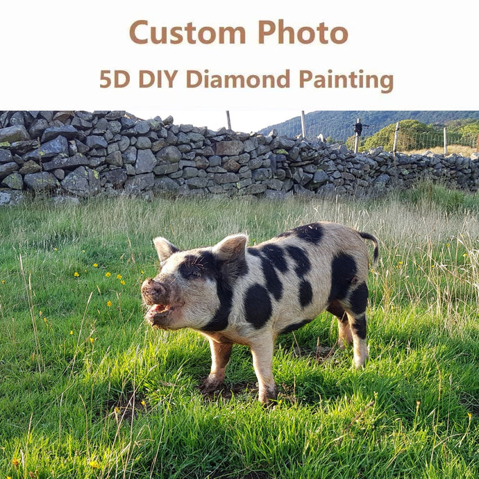 Custom 5D Diamond Painting Kit - Use Your Own Photo
