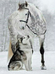 Winter Snow Horse and Wolf - 5D Diamond Painting Kit