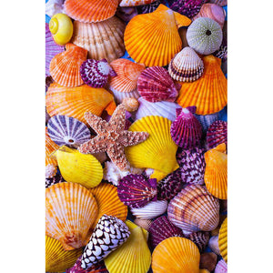 Beach Shells - 5D Diamond Painting Kit