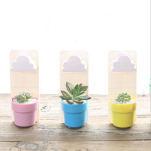 Cute Cloud Flowerpot