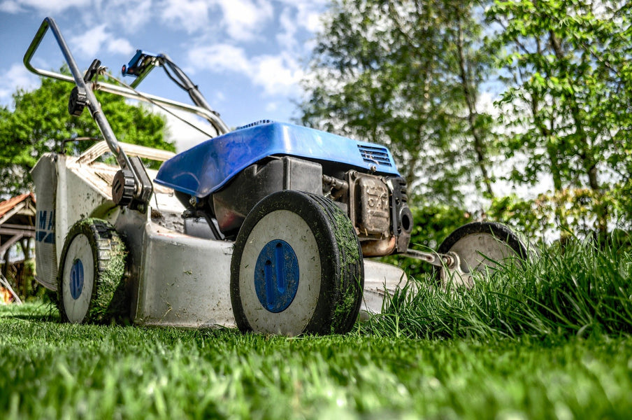 How To Create The Perfect Lawn