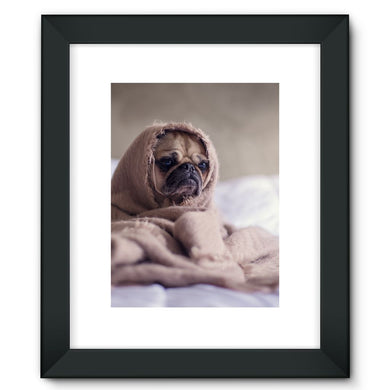 Pug Framed Fine Art Print