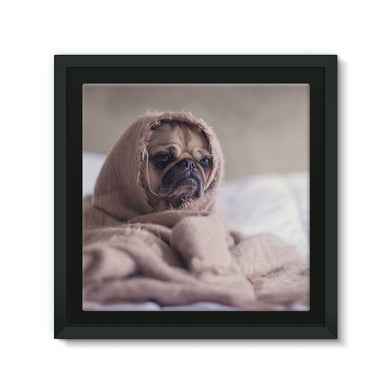 Pug Framed Eco-Canvas