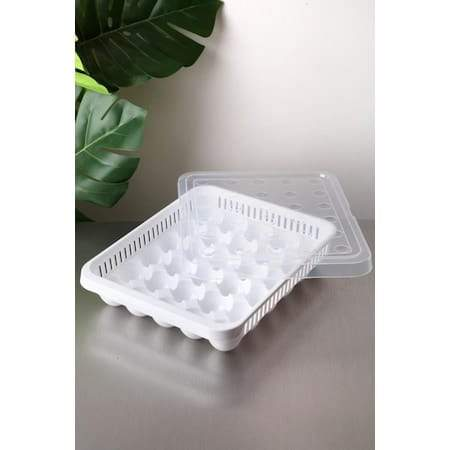 Egg Storage Box With Lid (30) - Greatest deals