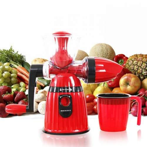 2 in1 Juicer And Ice Cream Maker (Meileyi)