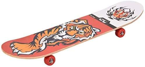 First Skate Board for Kids (Color and Design varying)  (Multicolor)