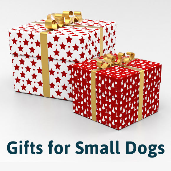 Holiday Gift Guide for Pets: Small Dogs