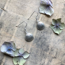 Load image into Gallery viewer, Sterling Silver Cockle Shell Earrings