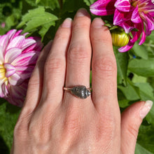 Load image into Gallery viewer, Sterling Silver Fossil Shell Ring