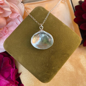 Sterling Silver Venus Shell Necklace