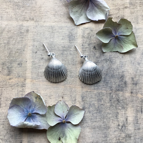 34646d12ed85f6 Sterling silver clam/cockle shell earrings