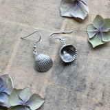 Sterling silver clam/cockle shell earrings
