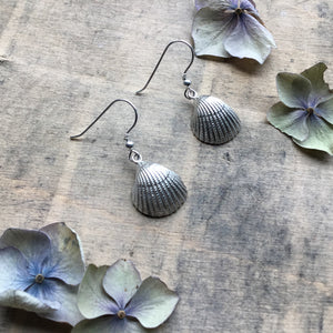 Sterling Silver Cockle Shell Earrings