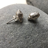 Sterling silver fossilised shell stud earrings