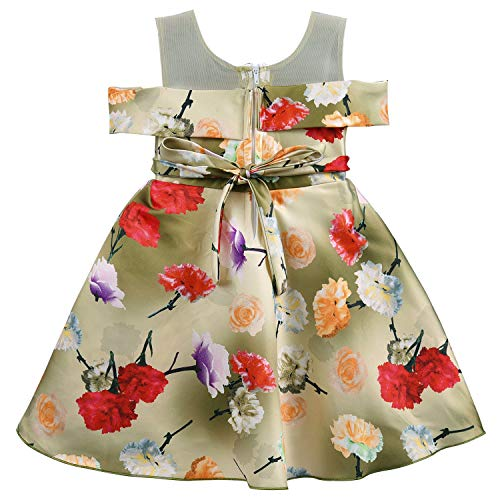 Baby Girls Frock Dress-fe2731rd
