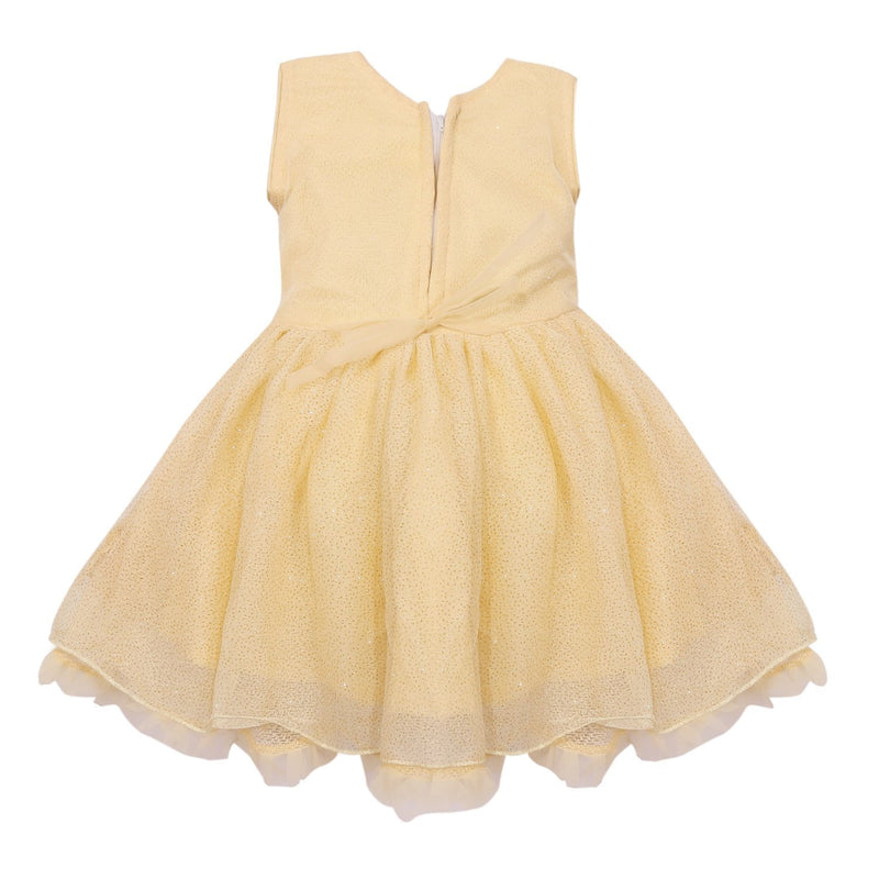 Baby Girls Party Wear Frock Dress fe2434bg -  Wish Karo Dresses