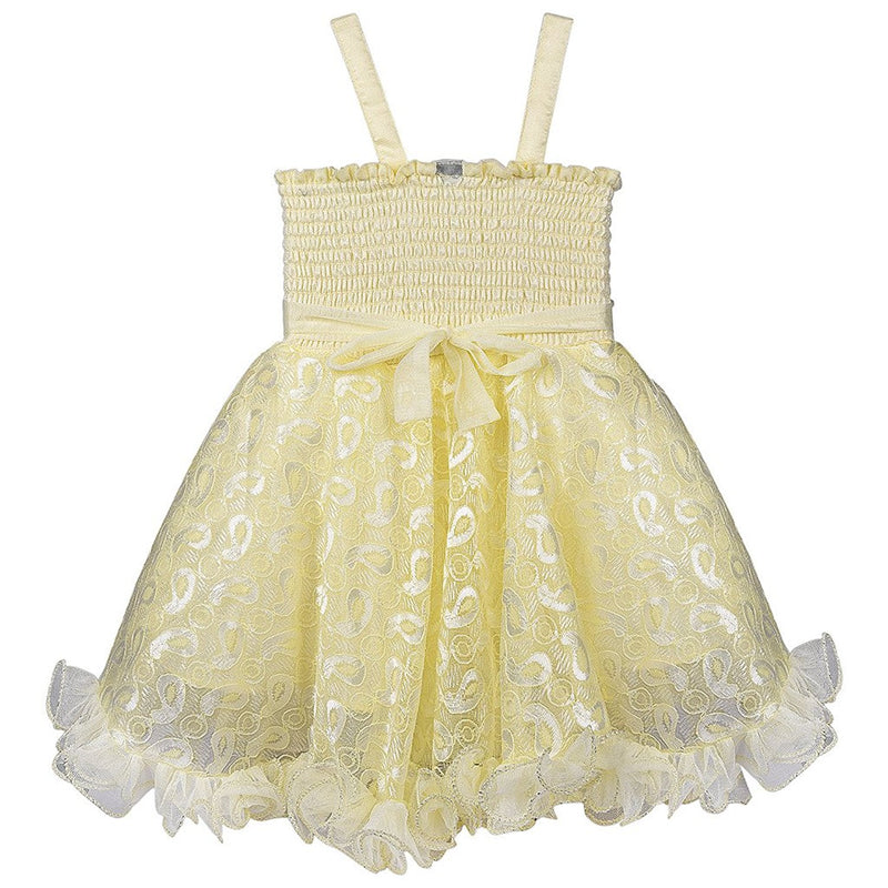 Baby Girls Party Wear Frock Dress DN fe1203cnw -  Wish Karo Dresses