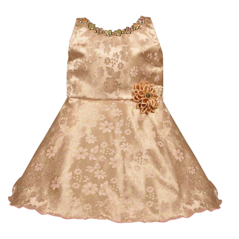 Baby Girls Party Wear Frock Dress fe2407pch -  Wish Karo Dresses