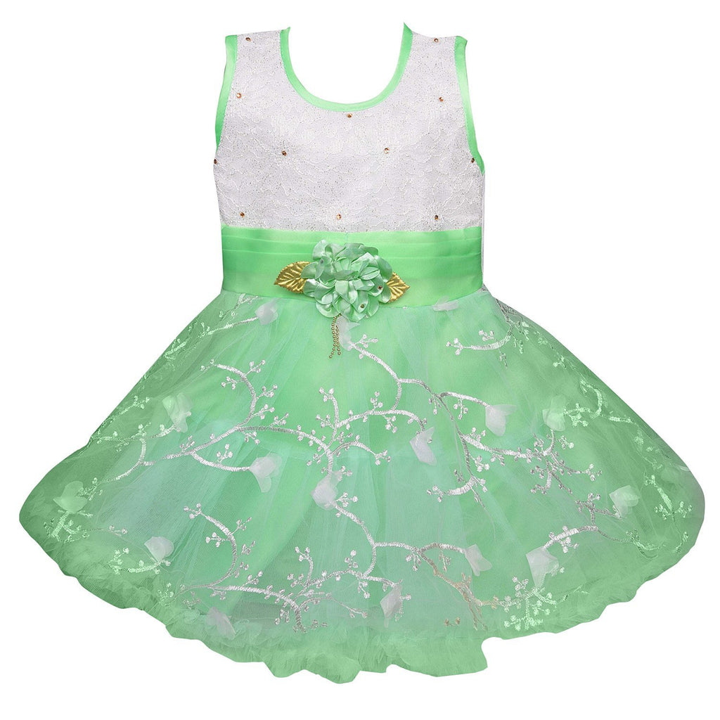 Baby Girls Party Wear Frock Dress fe2172sgnw -  Wish Karo Dresses
