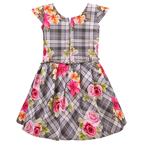 Baby Girls Frock Dress-fe2807rd