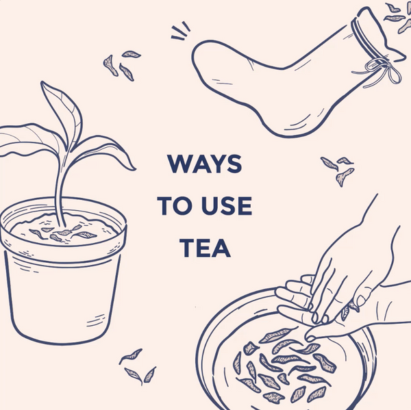 Ways to Reuse Tea Leaves