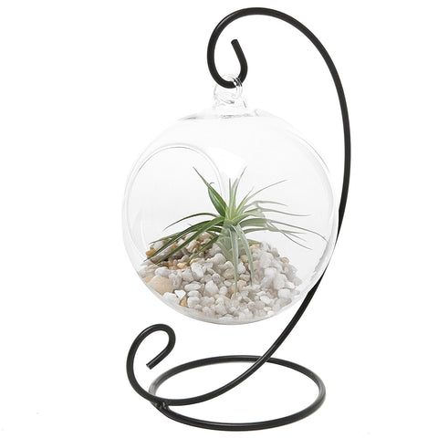 (7) Crystal Glass Ball Vase Hanging Centerpiece only $10 FREE SHIP - $15 on Amazon plus ship
