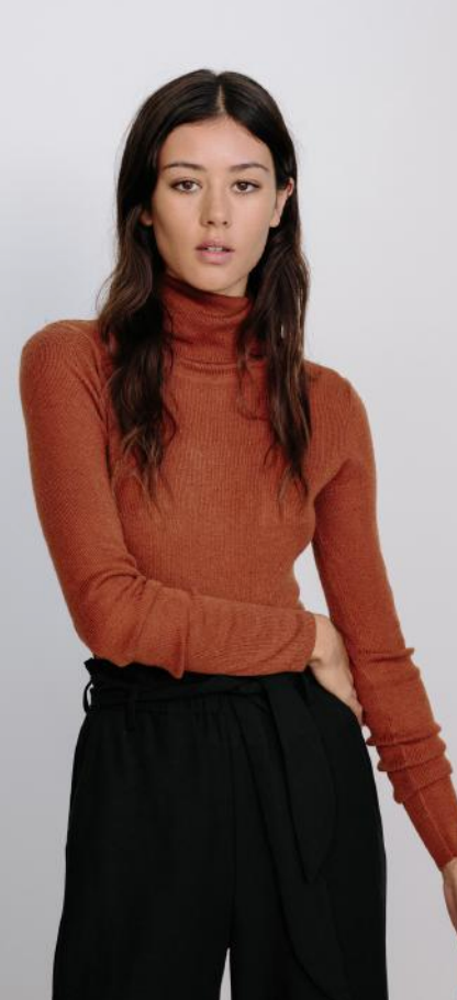 Basic Turtle Neck- Rust