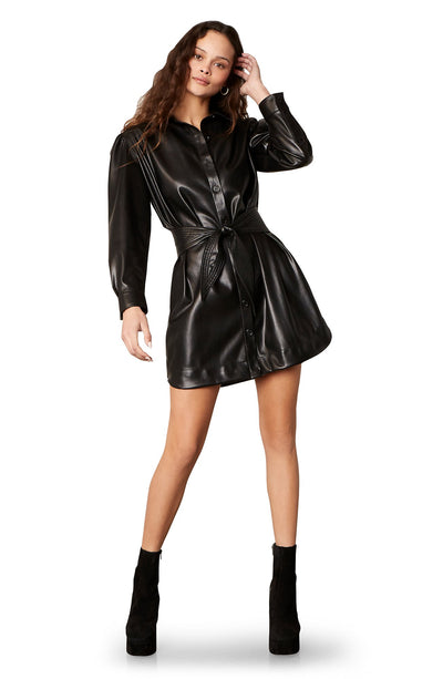 FAUX NELLY VEGAN LEATHER DRESS