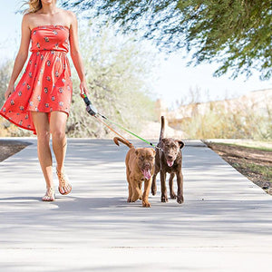 Take Two - Dual Retractable Dog Leash - hauzstyle.com