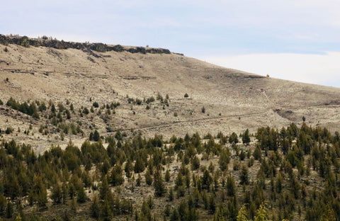Vanora Trail, as seen from Highway 26, coming out of Warm Springs, Oregon