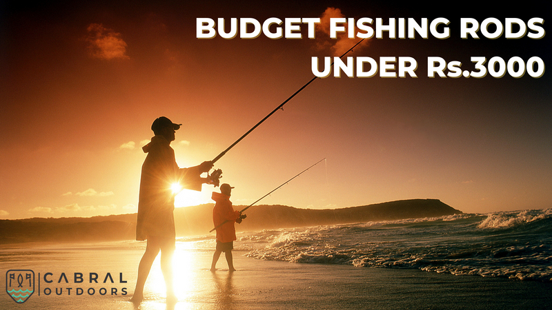 Best Budget Rods Under 3000rs