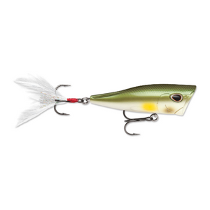 Storm Arashi Rattling Cover Pop Hard lure 8cm/14g, 1pcs/pkt popper - Cabral Outdoors