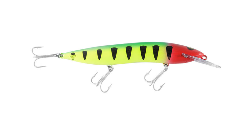 Halco Sorcerer 150DD Hard Lure 150mm/30g,1pcs/pkt Chrome Silver Multi Halco Hard Baits zaifish.myshopify.com Cabral Outdoors