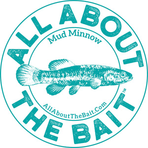 "Mud Minnow 5"" Round Sticker"