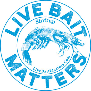 "Live Bait Matters - Shrimp 5"" Round Sticker"