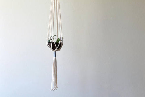Blue Color Accent Macrame Plant Hanger