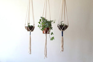 Gray Color Accent Macrame Plant Hanger