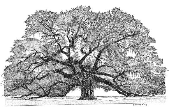 Angel Oak Notecard