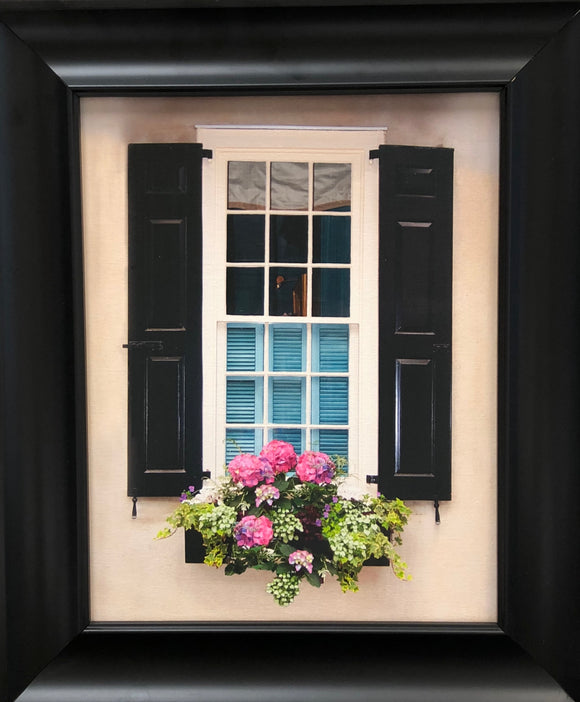 Charleston Windowboxes:  Adobe Wall with Black Shutters