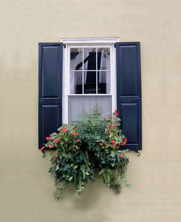 Charleston Windowboxes  Smooth stucco wall