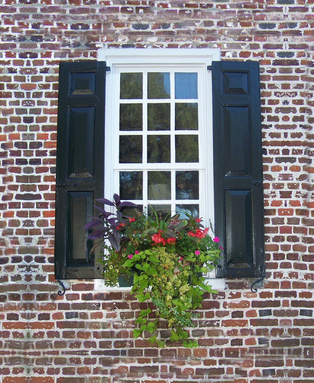 Charleston Windowboxes  Brick with red flowers