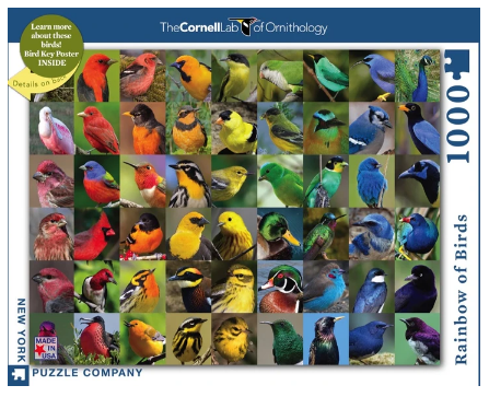 Rainbow of Birds 1000pc Puzzle