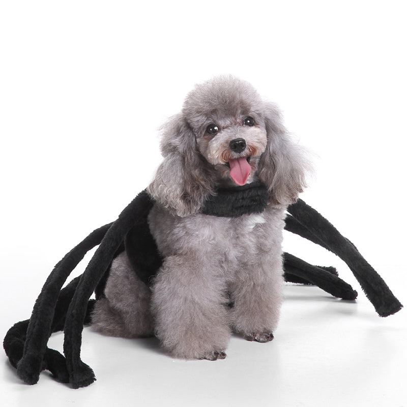 IDEPET-Dog-Spider-Costume ...  sc 1 st  Love Your Pets Supplies & IDEPET Dog Spider Costume u2013 Love Your Pets Supplies