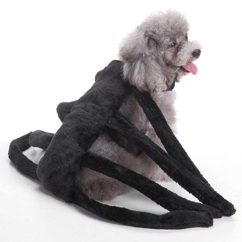 ... IDEPET-Dog-Spider-Costume ...  sc 1 st  Love Your Pets Supplies & IDEPET Dog Spider Costume u2013 Love Your Pets Supplies