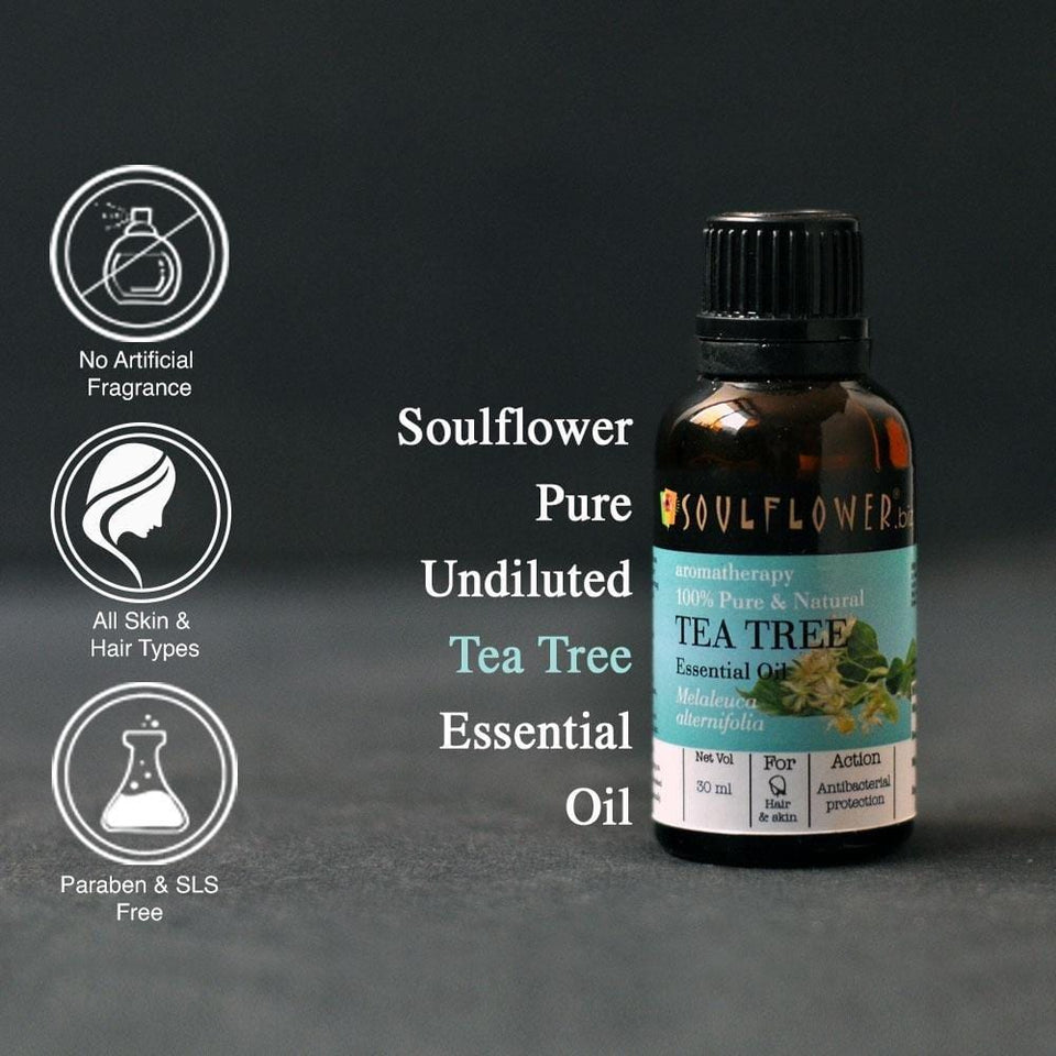 SOULFLOWER CASTOR TEA TREE MONTHLY REGIME WITH FREE APPLICATOR SET - Soulflower
