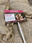 Seed Potatoes for Planting 'Maris Bard' First Early Variety (Free UK Postage)
